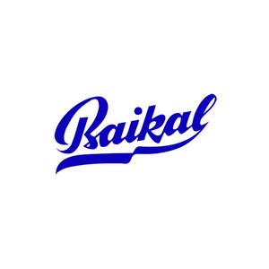Ремонт и Тюнинг пневматических винтовок Baikal (Байкал)